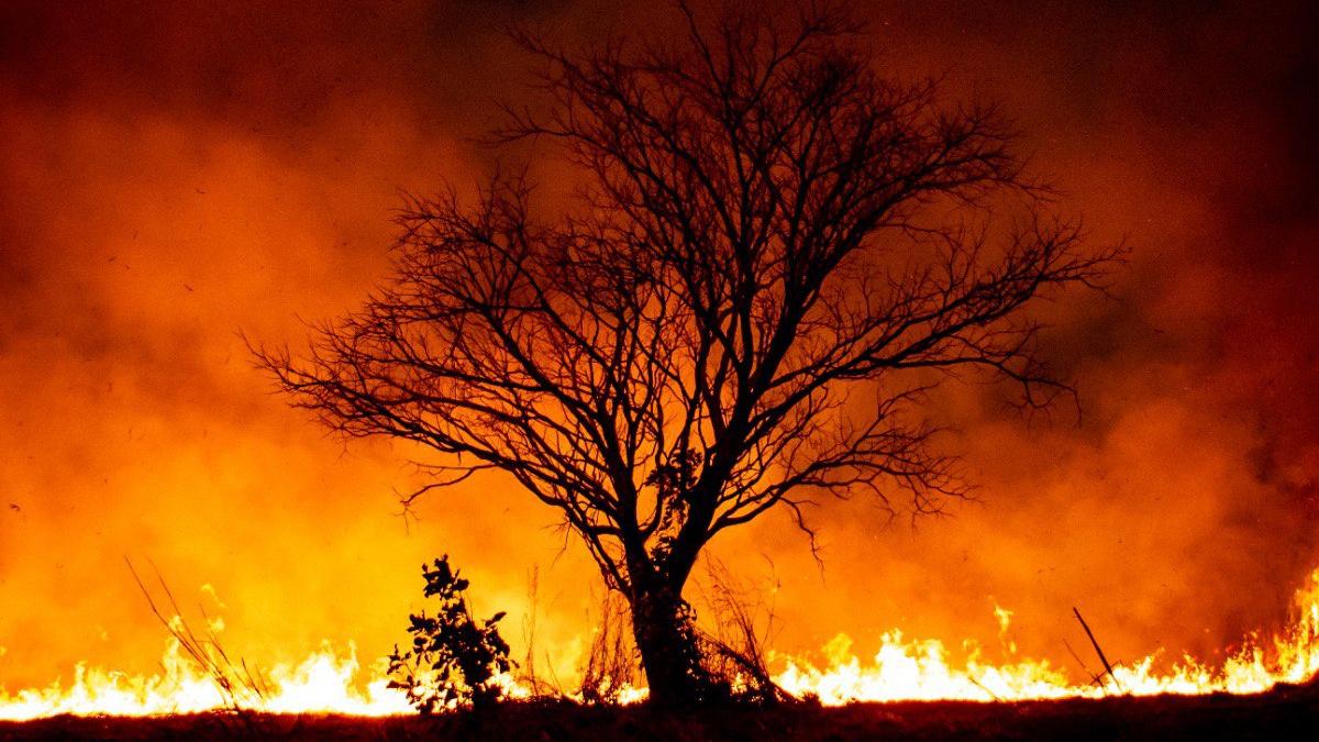 Março tem o menor número de incêndios urbanos dos últimos 14 meses em Goiás