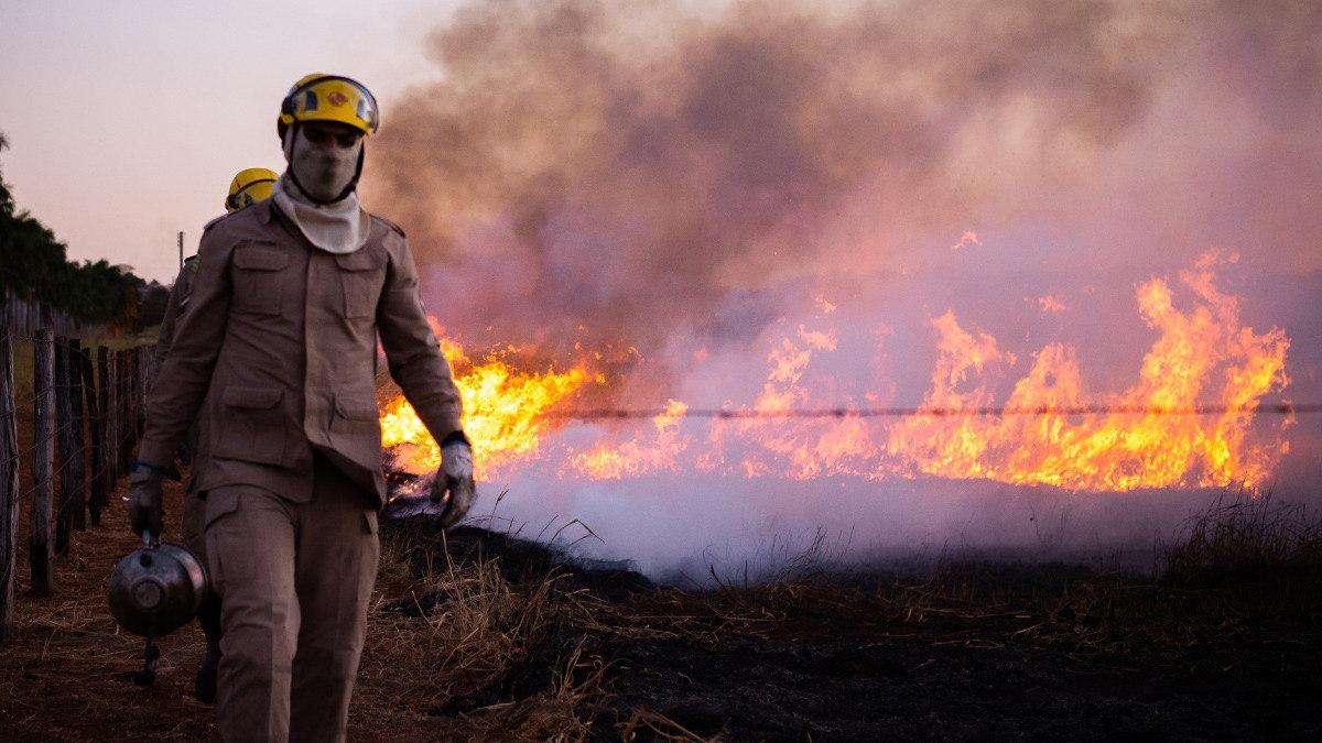 Bombeiros de Goiás revelou que, desde 2011 a corporação já atendeu em média 6,5 mil ocorrências de combate a incêndios em vegetação por ano