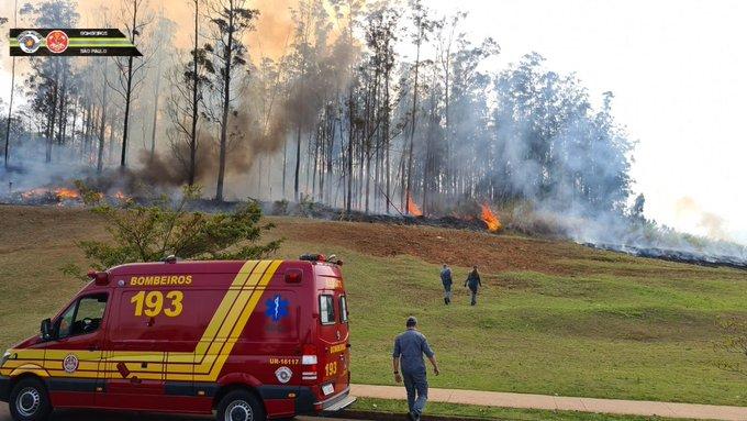 Fogo consome mata após queda de aeronave - Avião com quatro pessoas caiu em região de mata de Piracicaba (SP). Aeronave pegou fogo. Bombeiros estão no local para resgate