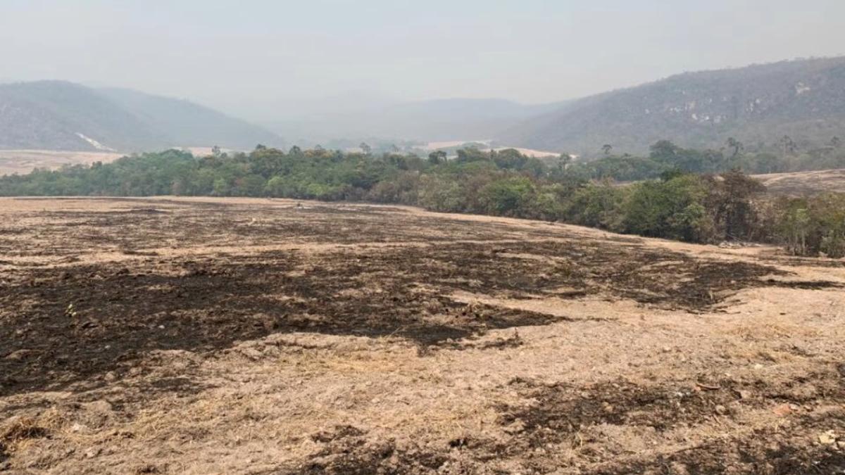 Polícia indicia 4 pessoas por incêndio criminoso de 12 dias na Chapada dos Veadeiros
